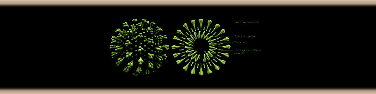 slider3_coronavirus